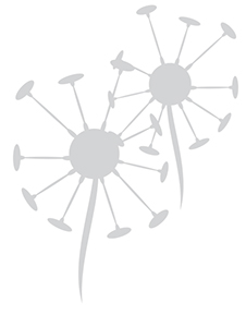 Logo Pusteblume 2